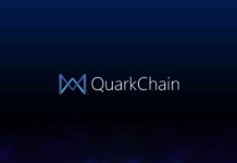 QUARKCHAIN REVIEW